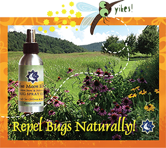 repel-bugs-image