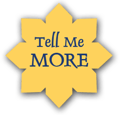 tell-me-more-seal